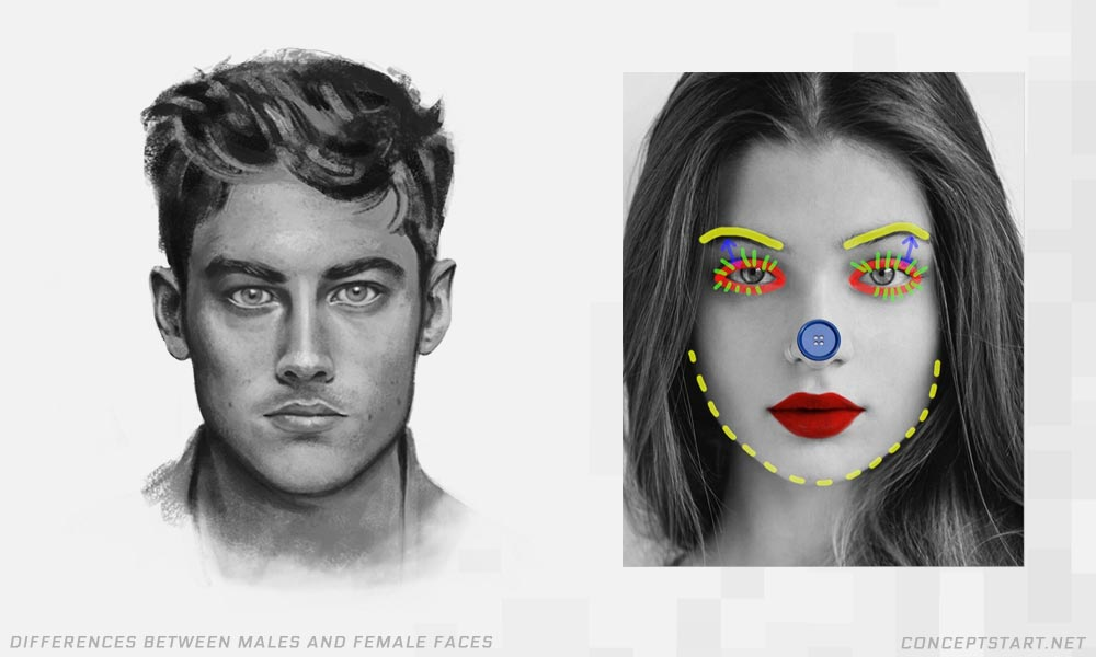 differences-between-male-female-faces