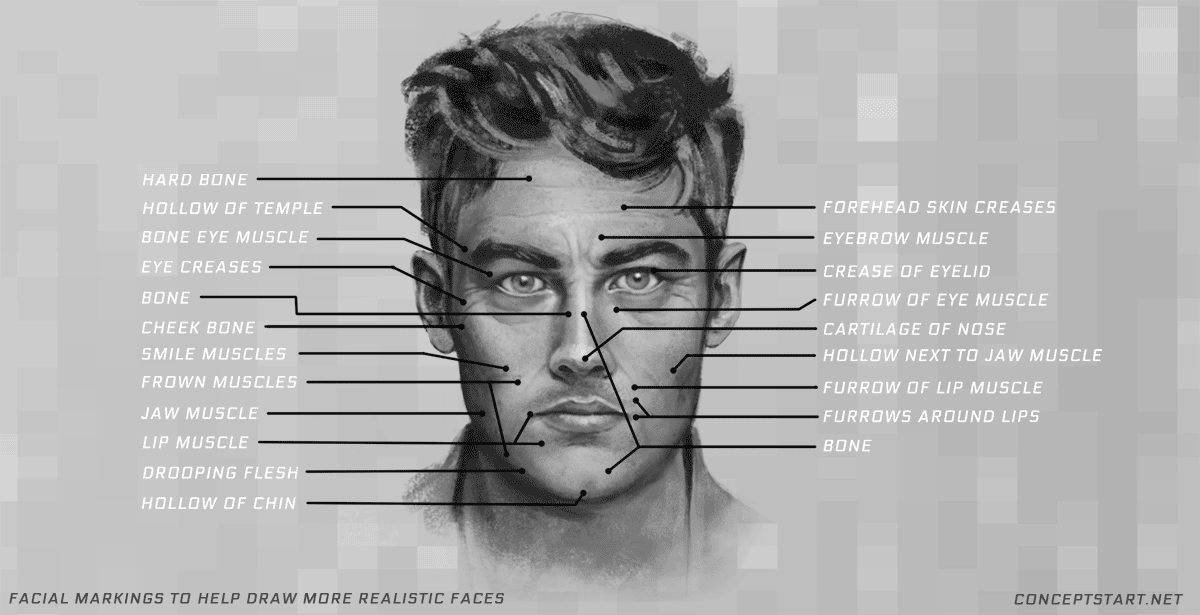 learn-facial-markings-for-drawing-faces