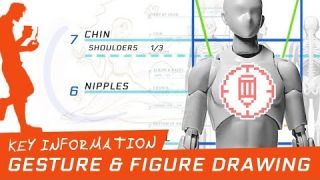 Drawing Tutorial: Gesture Drawing & Human Proportions